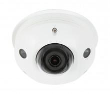 Surveillance™ 310 Series Dome IP Outdoor Camera