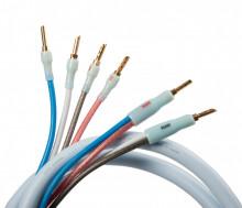 Quadrax 4x2.0 Bi-Wire CombiCon